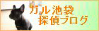 東京 ガル池袋探偵ブログ