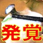 すき家「みそ汁にネジ」は氷山の一角!ゴキブリや竹串などの混入が大量発覚