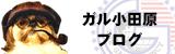 ガル小田原のブログ