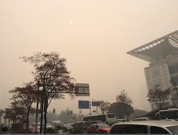PM2.5有り